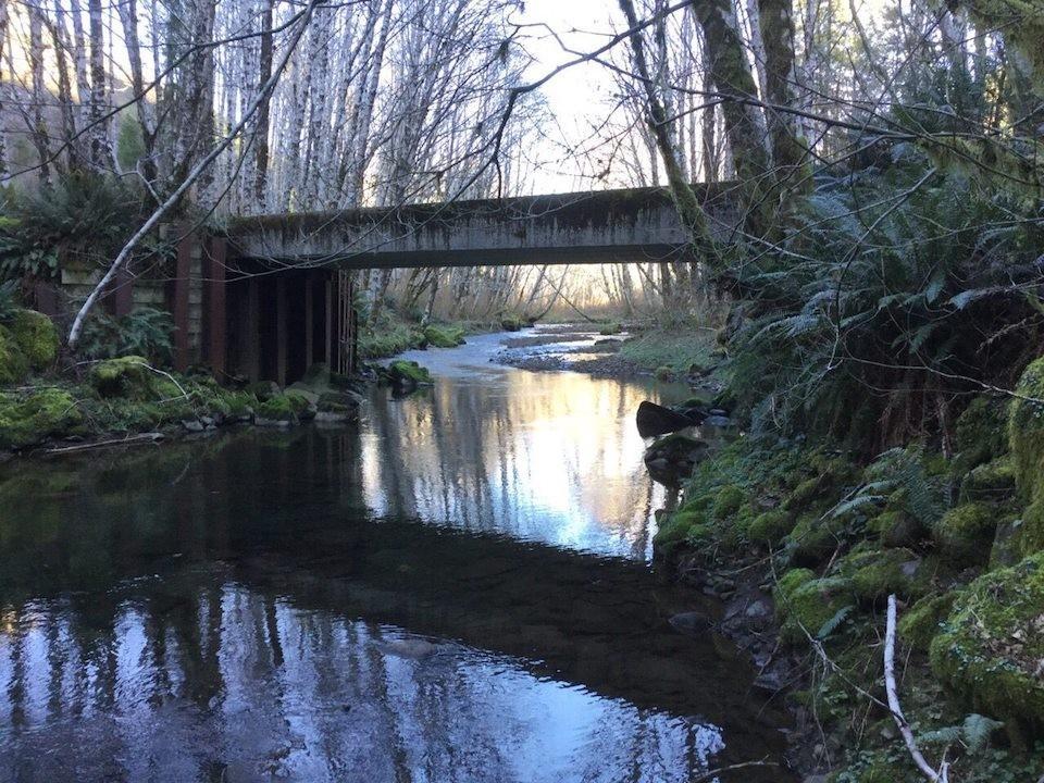 coast_range_bridge
